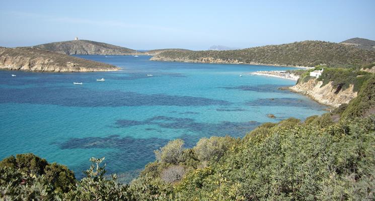 Appartamenti Vacanze In Sardegna